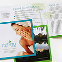 brochure - calino products